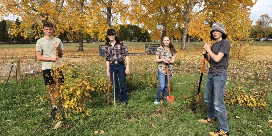 Grade 9 Agriculture students helping with fall cleanup at the Community Garden